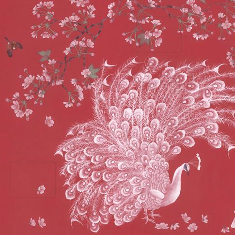 玉兰墙纸 壁纸 国色天香NVH16040601