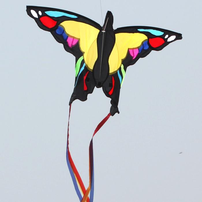 Colorful birds burrerfly/au Butterfly Kite