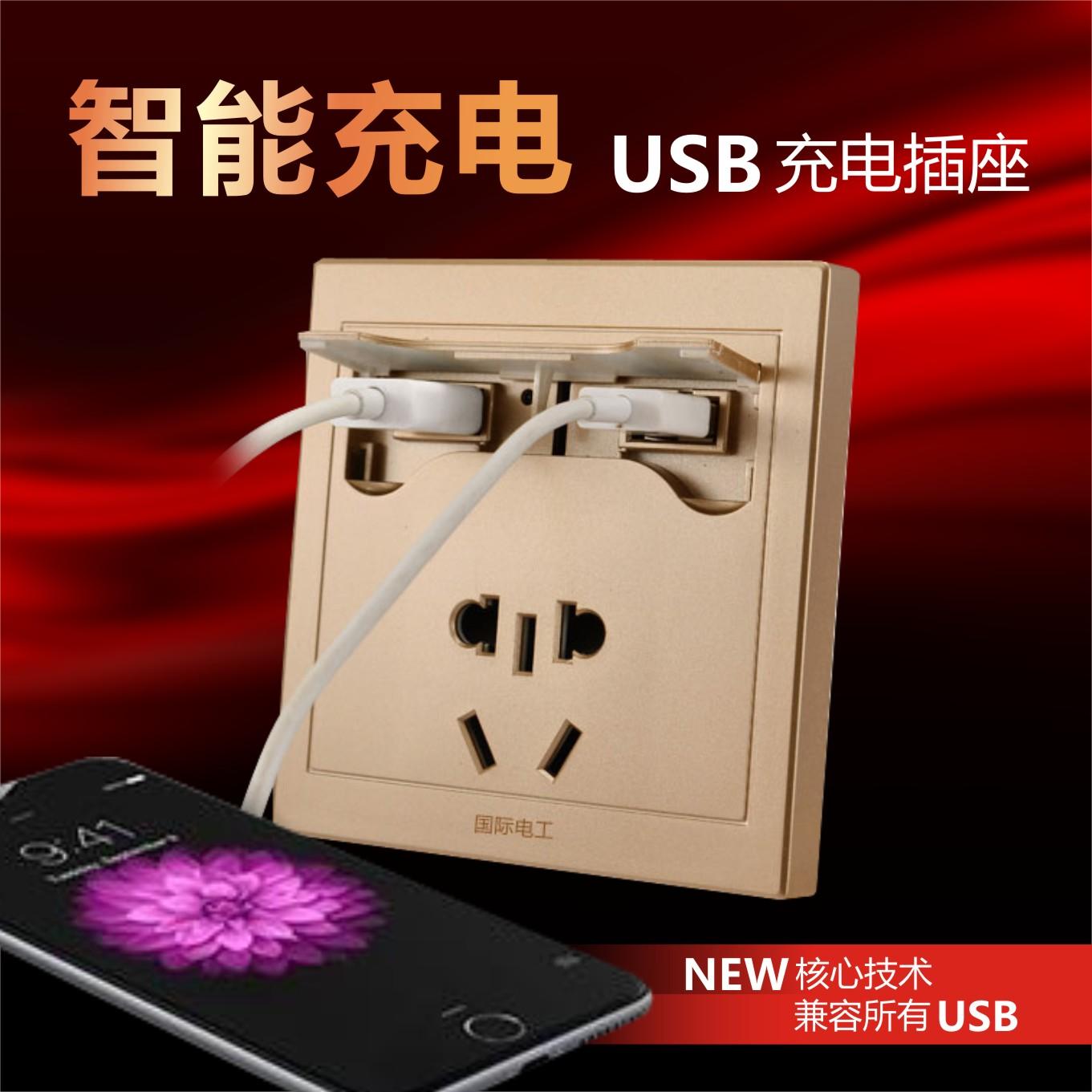 Розетка с выключателем   USB USB USB