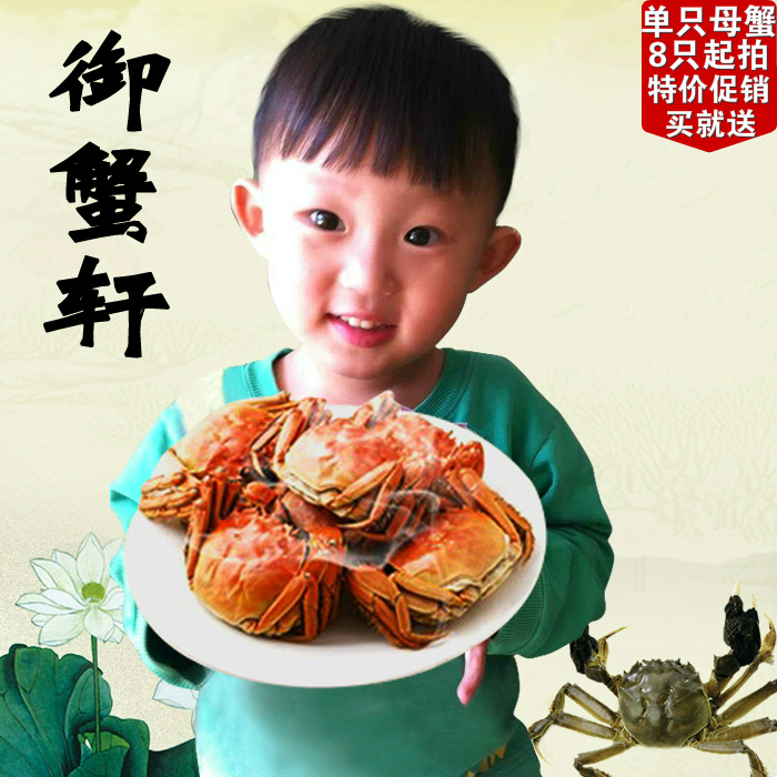 Yu and crabs Xuan 2.6-3.0 yu and crabs xuan 2 6 3 0