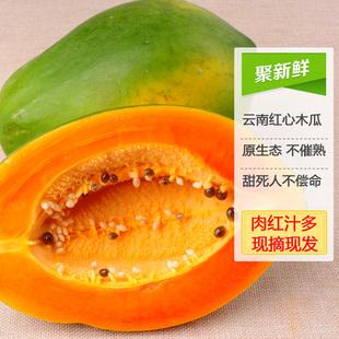 展宇云南特产新鲜水果生
