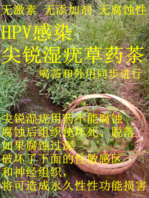 Herbs  HPV hpv infection in women kab