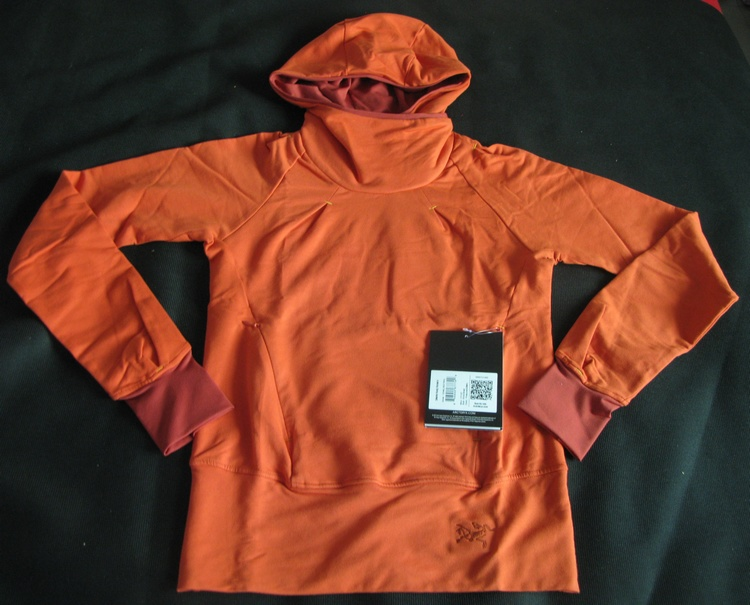 Футболка ARCTERYX 12049 Detente Hoody neal detente or debacle