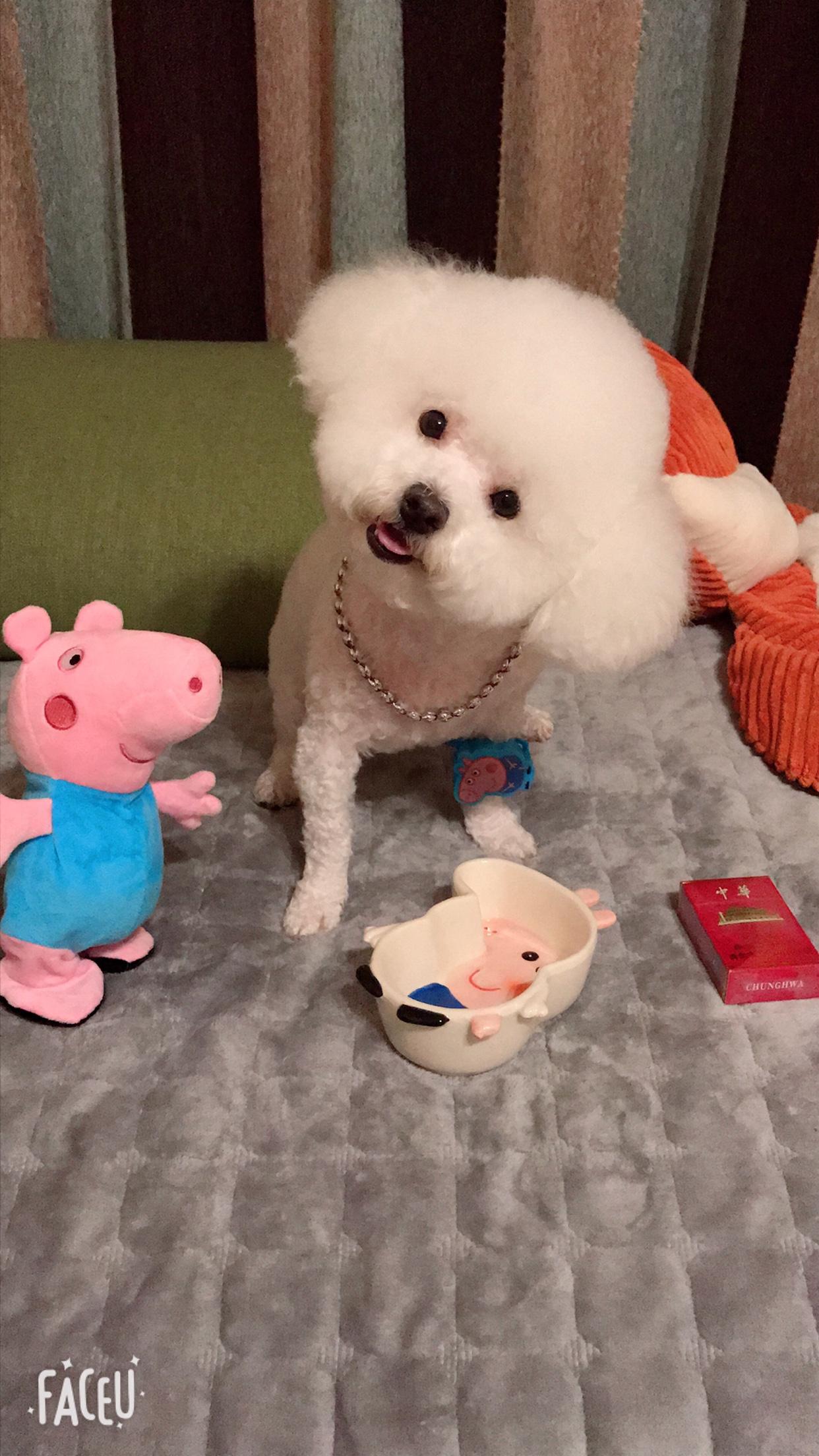 【抖音同款网红小猪佩琪手表带奶片糖佩奇玩具