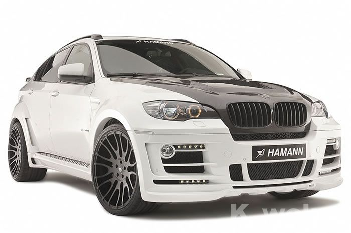Элемент салона Lions special BMW E71/X6 HAMANN lions and shadows