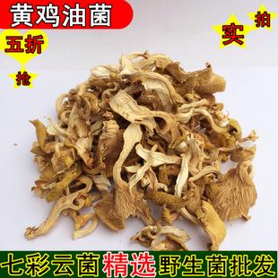 黄鸡油菌 又名黄丝菌 云