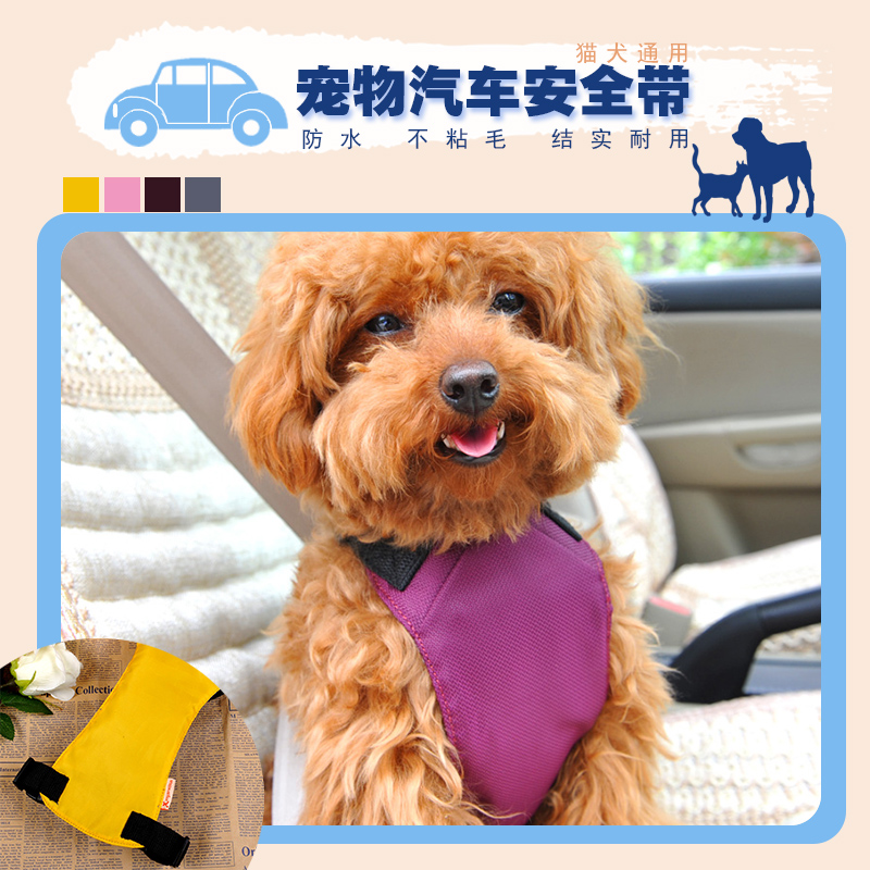 Hoopet collins essential chinese dictionary