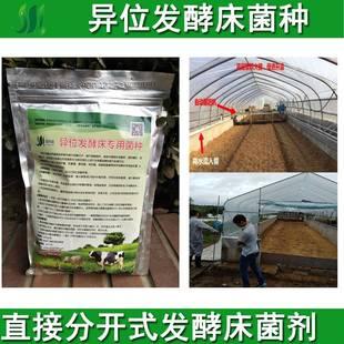 发酵床菌种原位异位发酵床专用复合菌粉剂干撒式养猪鸡鸭蛇em菌液