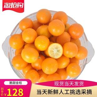 金桔新鮮水果5斤包郵蜜桔廣西桂林特産正宗滑皮小橘子甜金橘金桔