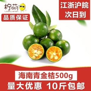 海南青金桔 500克 新鲜水果小金桔青柠金橘 10斤坏果包赔