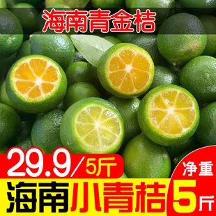 海南新鲜小金桔3/5斤小青桔包邮皮薄小金橘小青橘青柠檬青桔柠檬