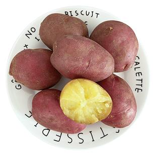 云南小土豆10斤新鲜蔬菜马铃薯红皮洋芋黄心土豆农家特产批发包邮