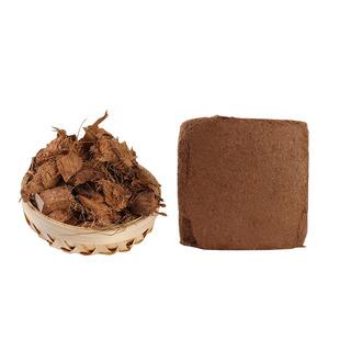 进口大椰砖种菜种植土无菌营养土