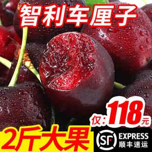 智利进口车厘子新鲜水果包邮当季2斤装批发孕妇甜脆大樱桃车里子