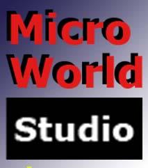 微观世界工作室