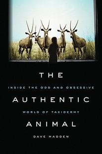 【预售】The Authentic Animal: Inside the Odd and Obsessive