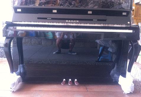 Пианино HELEN 120D helen williams paul and virginia