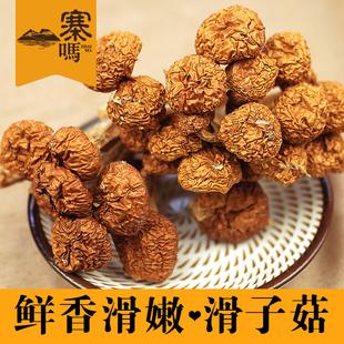 寨吗 滑子菇古田滑子蘑滑菇珍珠菇肉香干货菌菇食用菌100克x1袋