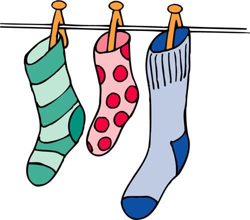 桉树的袜子