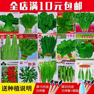 蔬菜种子四季播阳台种菜庭院原厂彩包菜种水果菠菜小葱香菜韭菜籽