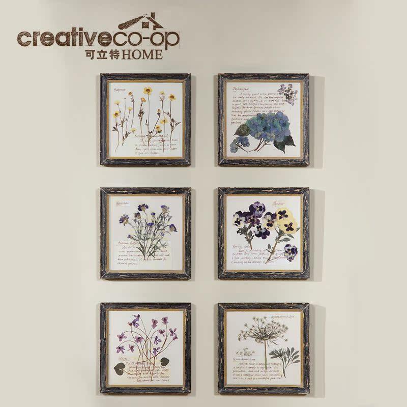 可立特 花卉植物壁画DE5316A