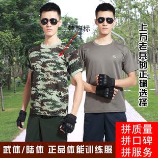 体能训练服套装特种兵正品战术圆领夏季男女士t恤裤装军迷彩短袖