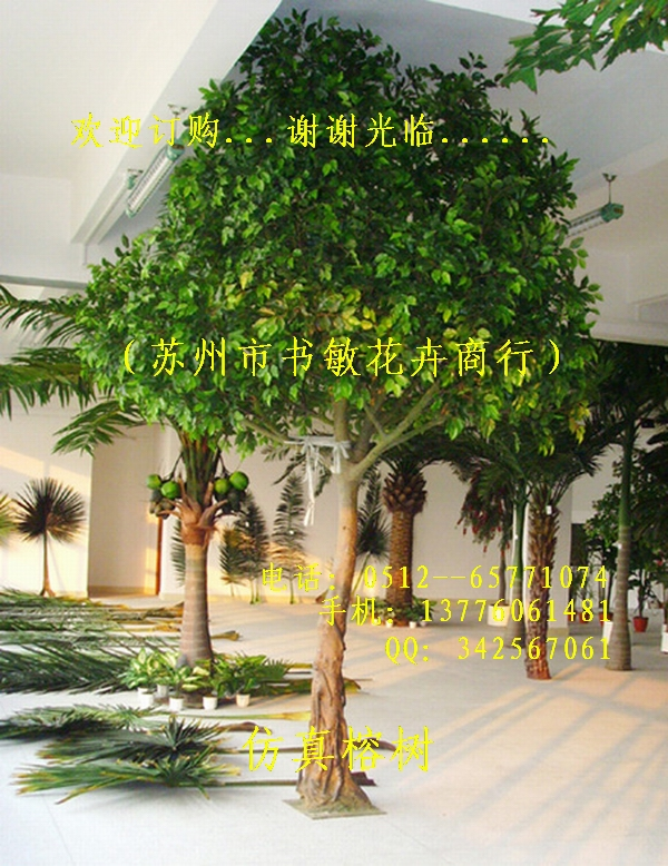 Листья Suzhou books sensitive flower firm AX /9010 3.5 corporate governance and firm value