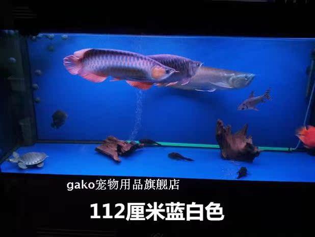 龙鱼灯led潜水灯金红龙鱼专用灯水中灯鱼缸灯水族箱灯15