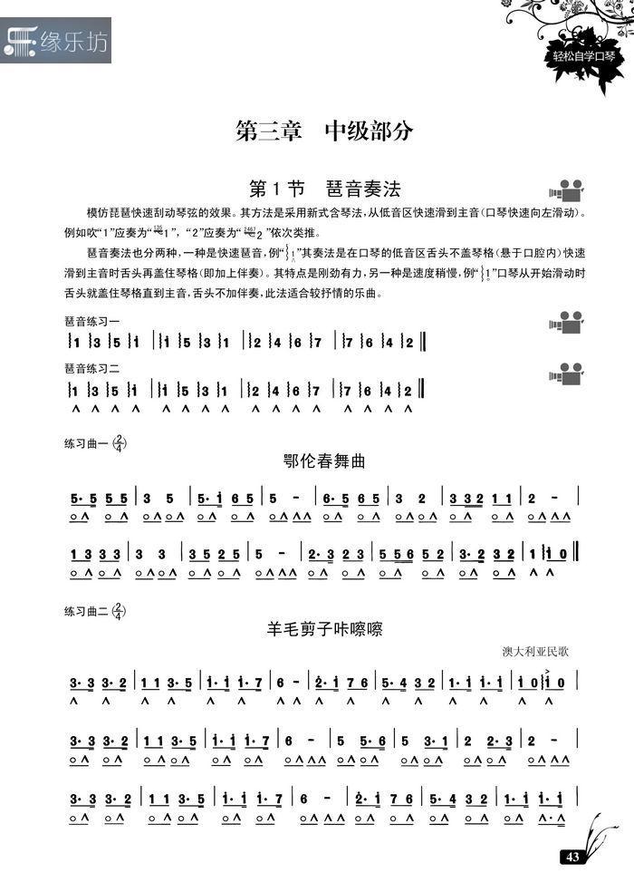 正版轻松自学口琴教程 半音阶24孔复音口琴初学入门教材书附dvd图片