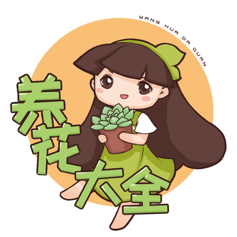 养花大全_好物推荐