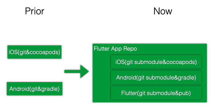 Flutter Project Structure