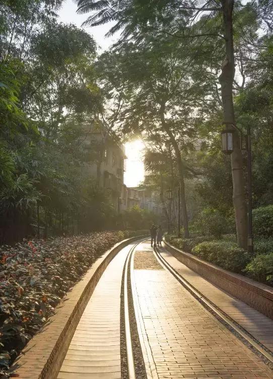 中国第一条海景地铁!真实版《千与千寻》,成都出发来场跨海之旅
