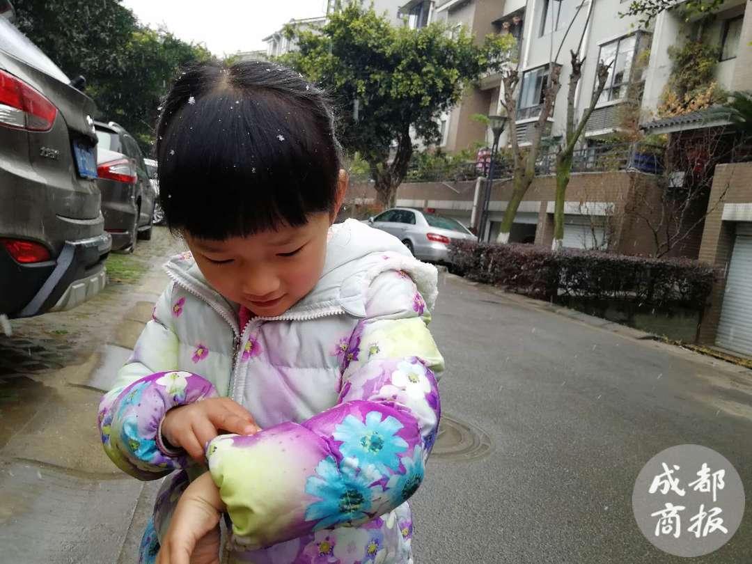 下雪了!德阳市区雪花飞舞