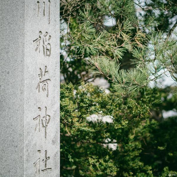 图记:北海道函馆,半日钟情