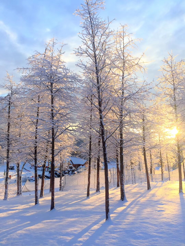 哇美如仙境西岭雪山降下新春第一