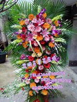 (Special) Kunming opened Flower Basket celebration opened housewarming business flower city flower basket Courier home delivery