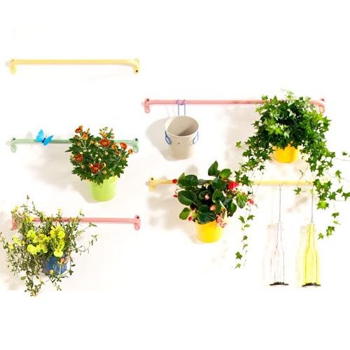 #我有一座后花园,送你满屋芬芳#我想为你当个花匠,送你满屋芬…