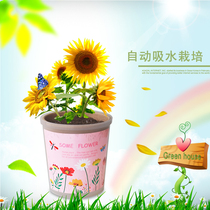 Automatic water-absorbing diy children planting creative cute mini plants happy farm desktop small potted micro landscape