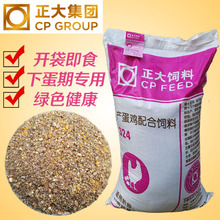 Zhengda 324 laying hens feed, grain, pet farm chickens, free-range chickens, local chickens, ducks and geese, supplement calcium quail 80 Jin