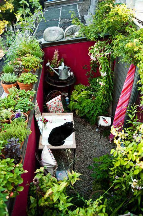 """窄小的""""休闲区""""就像一个露天的花房,自然、有氧,可以呼吸到新…"""
