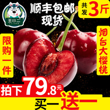 Buy 1 to send 1 Shandong Yantai Big Cherry Fresh Fruit Pack Mail This Season Cheli 3 Kinds 5 Cars Mei Zao