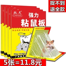 Mice stickers with strong rat stickers and five rodenticides for rodenticide household genuine rodenticide insecticides