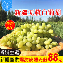 Xinjiang Turpan Seedless White Grape Fresh Fruit Packed Raisins Pregnant Women Seedless Fresh Grapes A Box of 6 Kinds