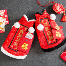 New Year celebration cat clothes pet New Year kitten cat warm British short blue cat funny autumn and winter clothes