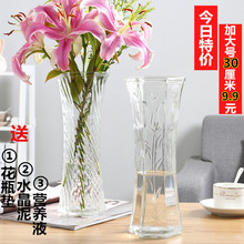 Modern Simple Glass Vase Transparent Large-sized Rich Bamboo Lily Hydraulic Flower Arrangement Decorative Hexagonal Vase