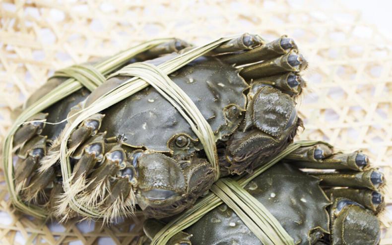 帝王蟹不是螃蟹?!那我吃的究竟是啥?