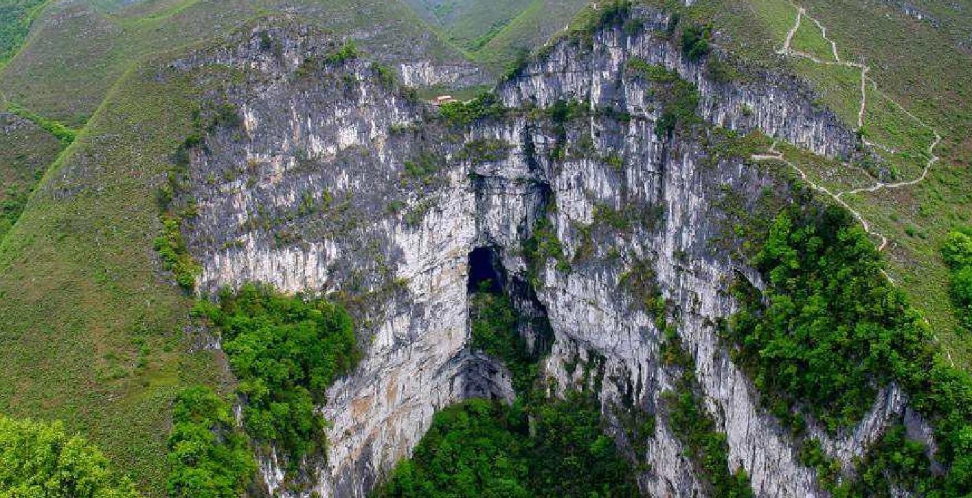 世界最大地下原始森林,在我国一处天坑中